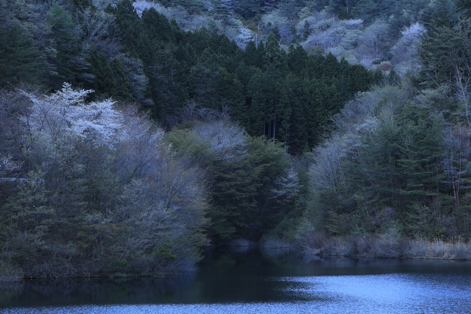 写真家 田中 達也の大口径望遠ズームSP 70-200mm F/2.8 G2で日本の風景を撮る