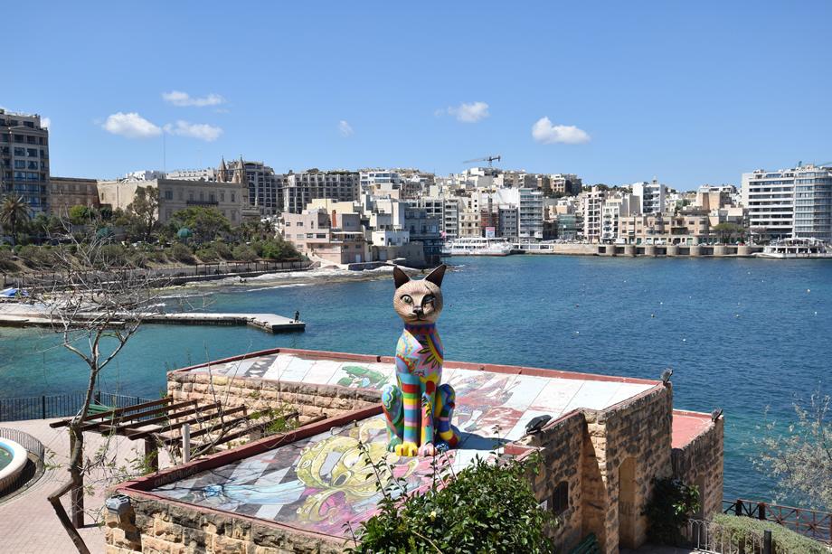 写真家 阿部 秀之が超広角ズームレンズ10-24mmでマルタ島を撮る「マルタの猫」第4回
