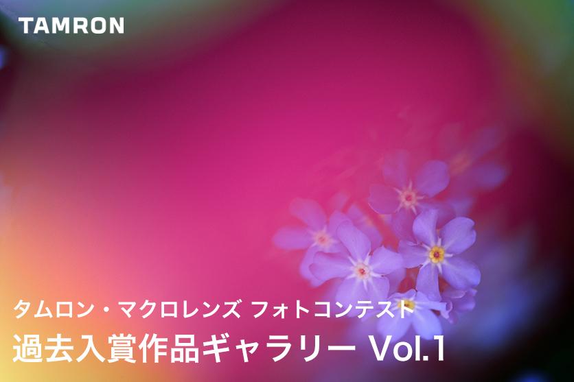 タムロン・マクロレンズ フォトコンテスト 過去の作品紹介 ネイチャーの部 Vol.1 花・昆虫・その他編