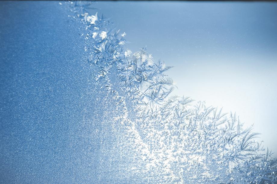 写真家 畠山公妥がSP 70-200mm F/2.8 Di VC USD G2で撮影する美しの森Winter 北海道 日高地区