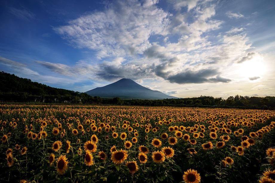富士山写真家 TAKASHI氏がタムロン17-28mm F2.8 Di III RXD (Model A046)で撮影した風景写真。全10カットを公開