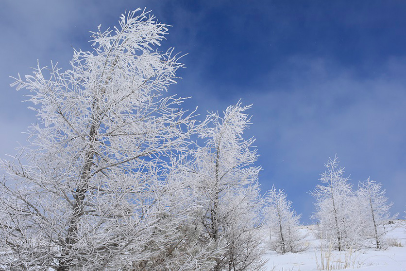 写真家 秦 達夫氏が大口径レンズ タムロンSP 35mm F1.4 (Model F045)で雪深い山々の冬景色を撮影。